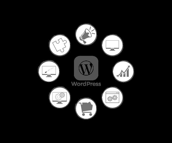 Web Design - mit WordPress